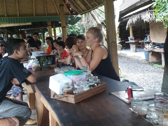 Luwak Coffee Plantation Ubud Bali Tour | Bali Holiday Packages